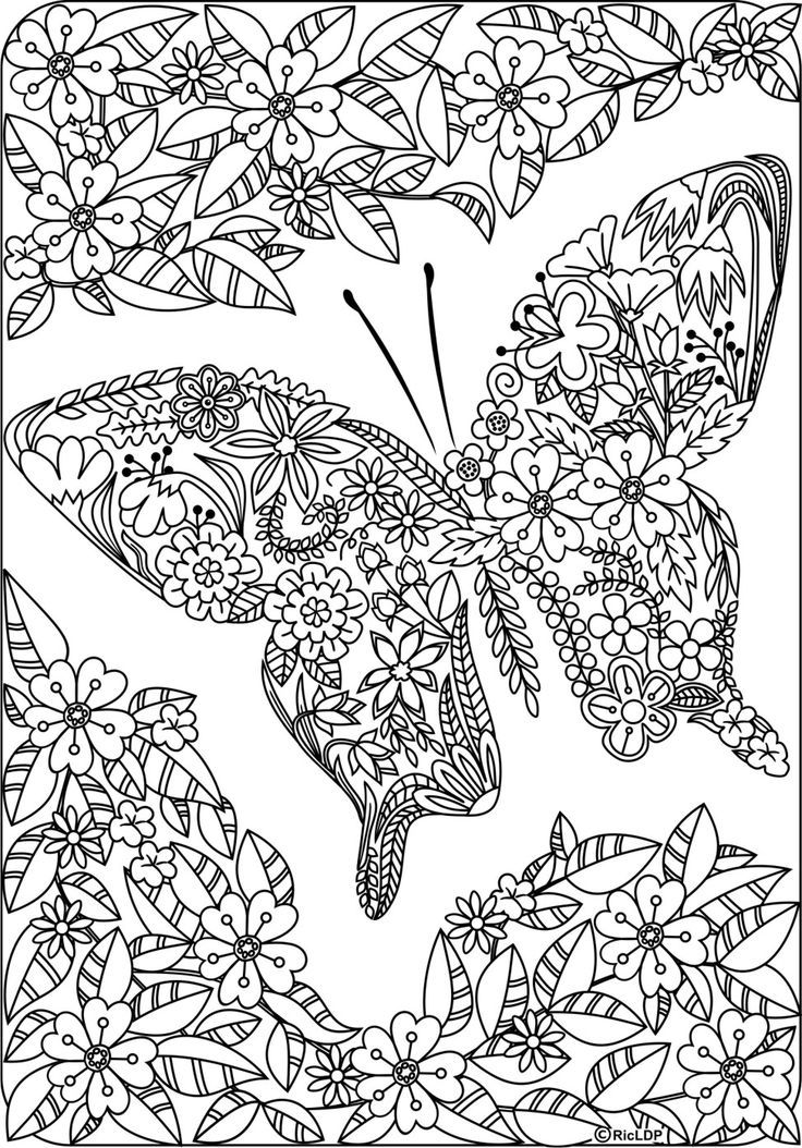 coloring pages with butterflies butterfly coloring pages for adults visual arts ideas coloring pages with butterflies