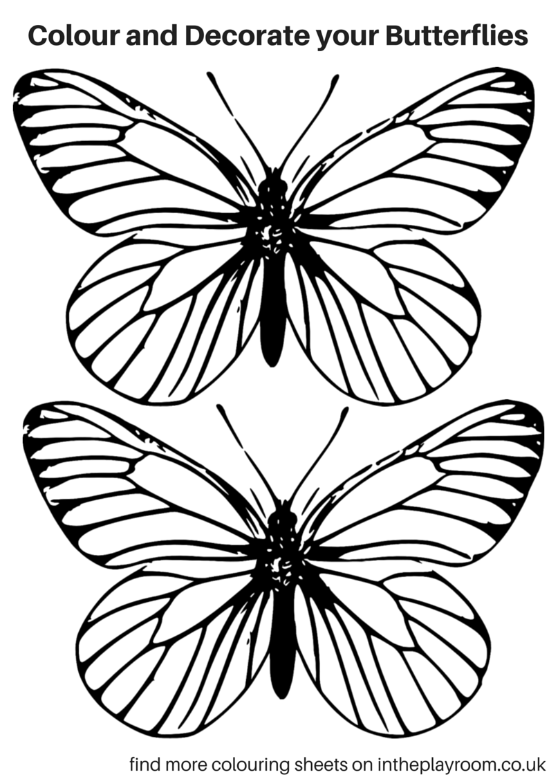 coloring pages with butterflies free printable butterfly colouring pages in the playroom butterflies pages coloring with