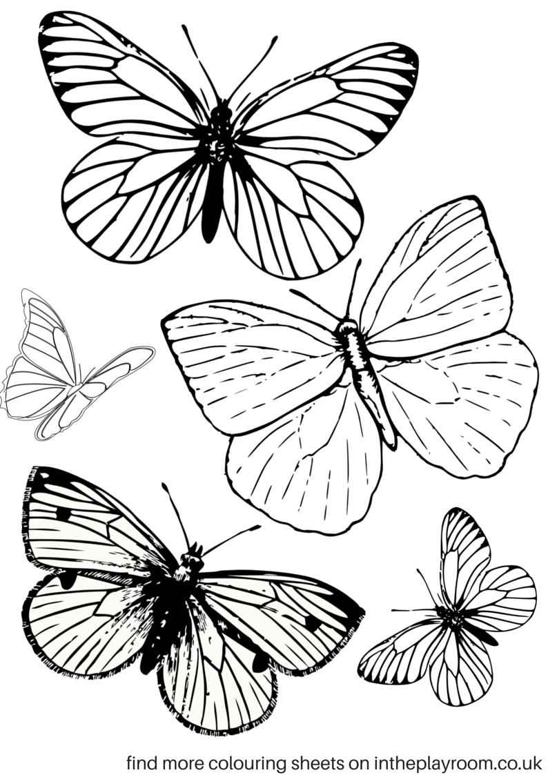coloring pages with butterflies free printable butterfly colouring pages in the playroom coloring pages with butterflies