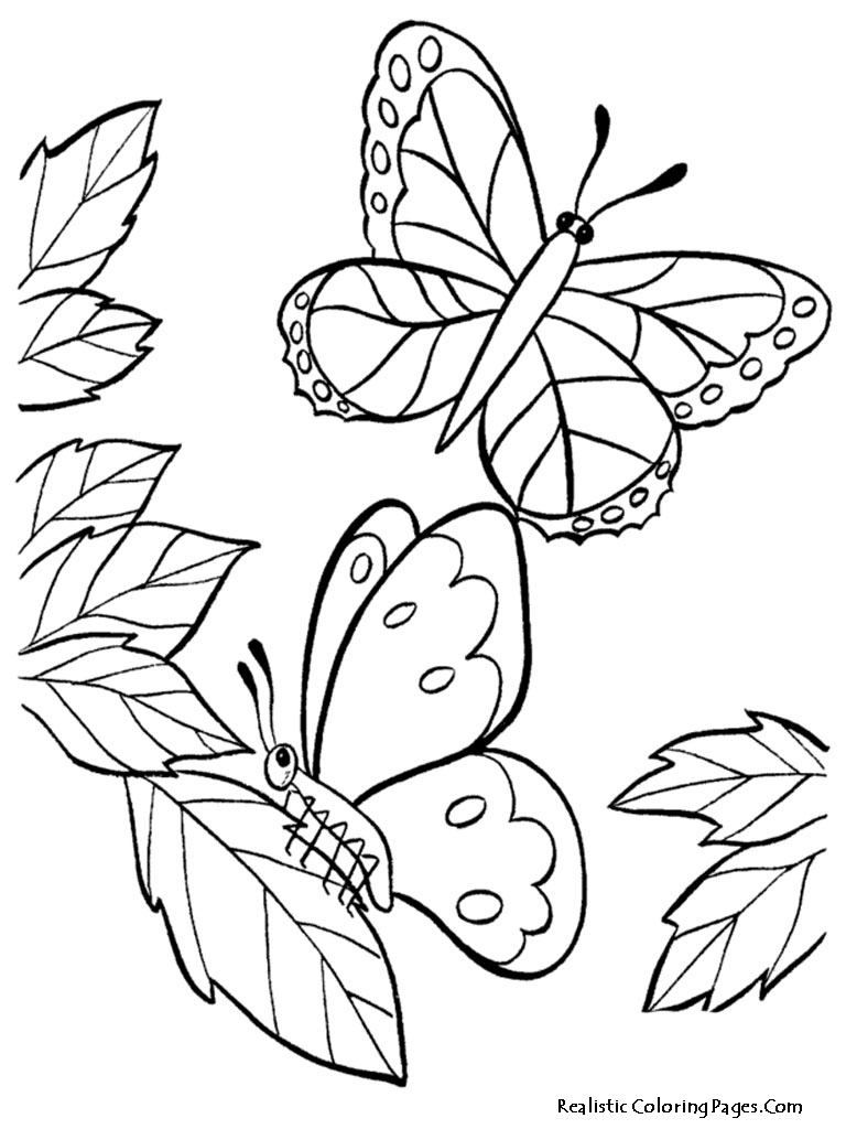 coloring pages with butterflies realistic butterfly coloring pages realistic coloring pages coloring butterflies pages with
