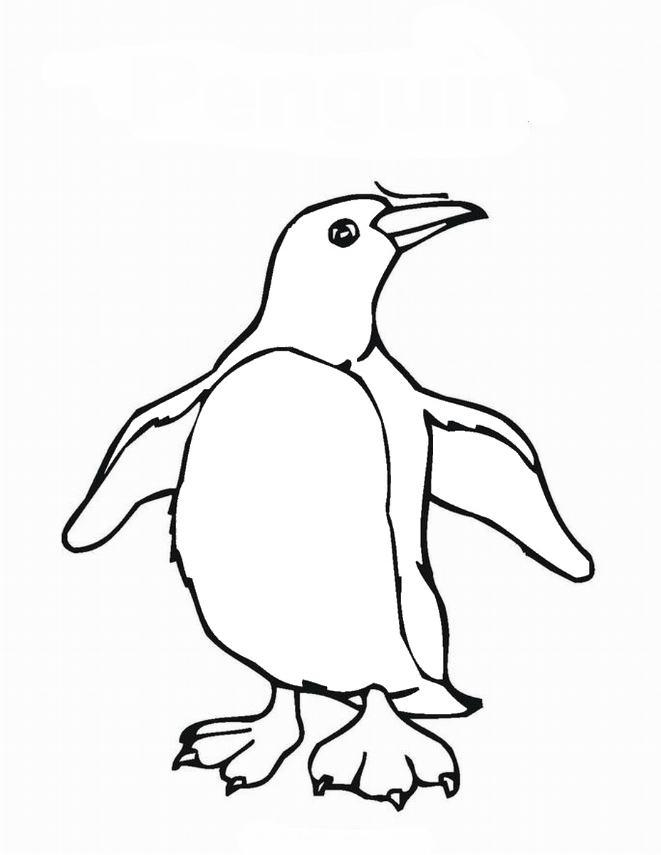 coloring penguins cute baby penguin coloring pages only coloring pages penguins coloring
