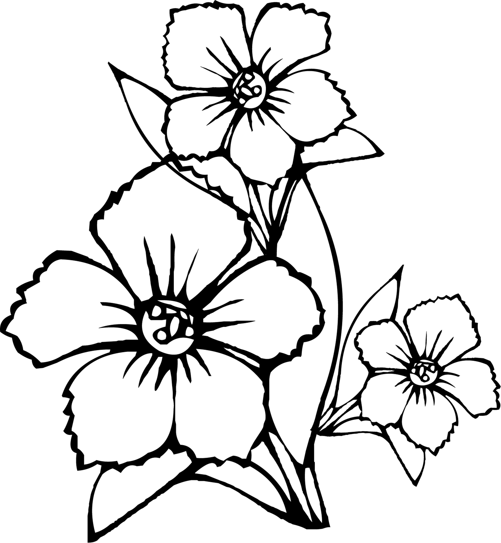 coloring pic of flower free easy to print flower coloring pages tulamama pic of coloring flower