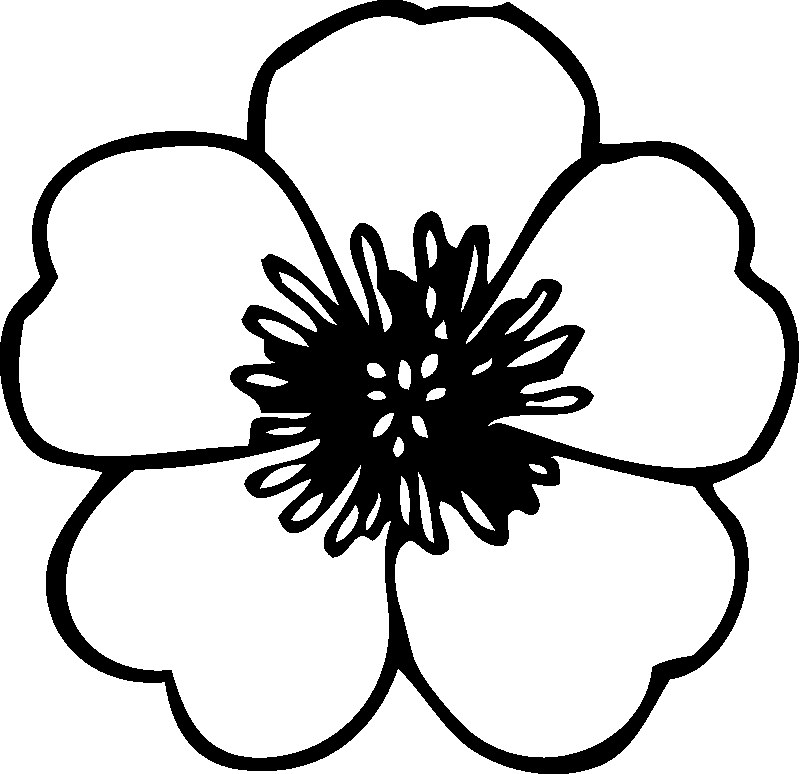 coloring pic of flower free printable flower coloring pages for kids best flower coloring of pic