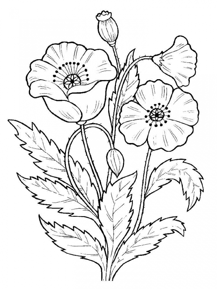 coloring pic of flower get this flowers coloring pages kids printable 2167 pic of coloring flower