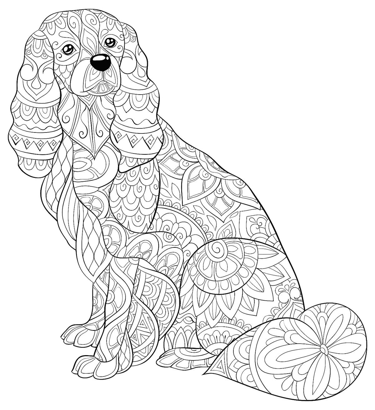 coloring pics of dogs dog coloring page of pics coloring dogs