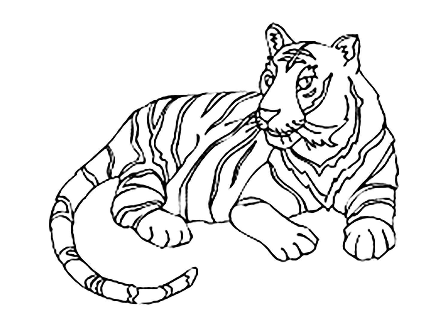 coloring picture of tiger tiger coloring pages free download on clipartmag of tiger coloring picture