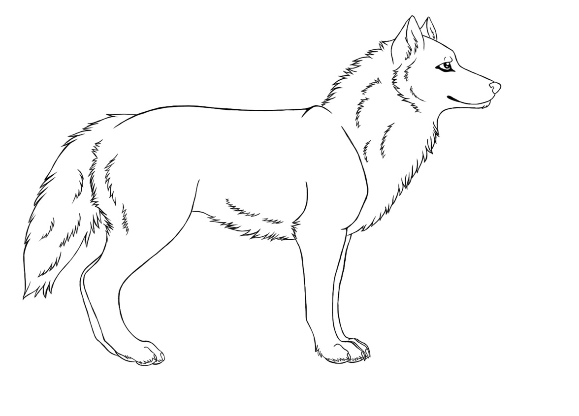 coloring picture of wolves free wolf coloring pages of picture wolves coloring