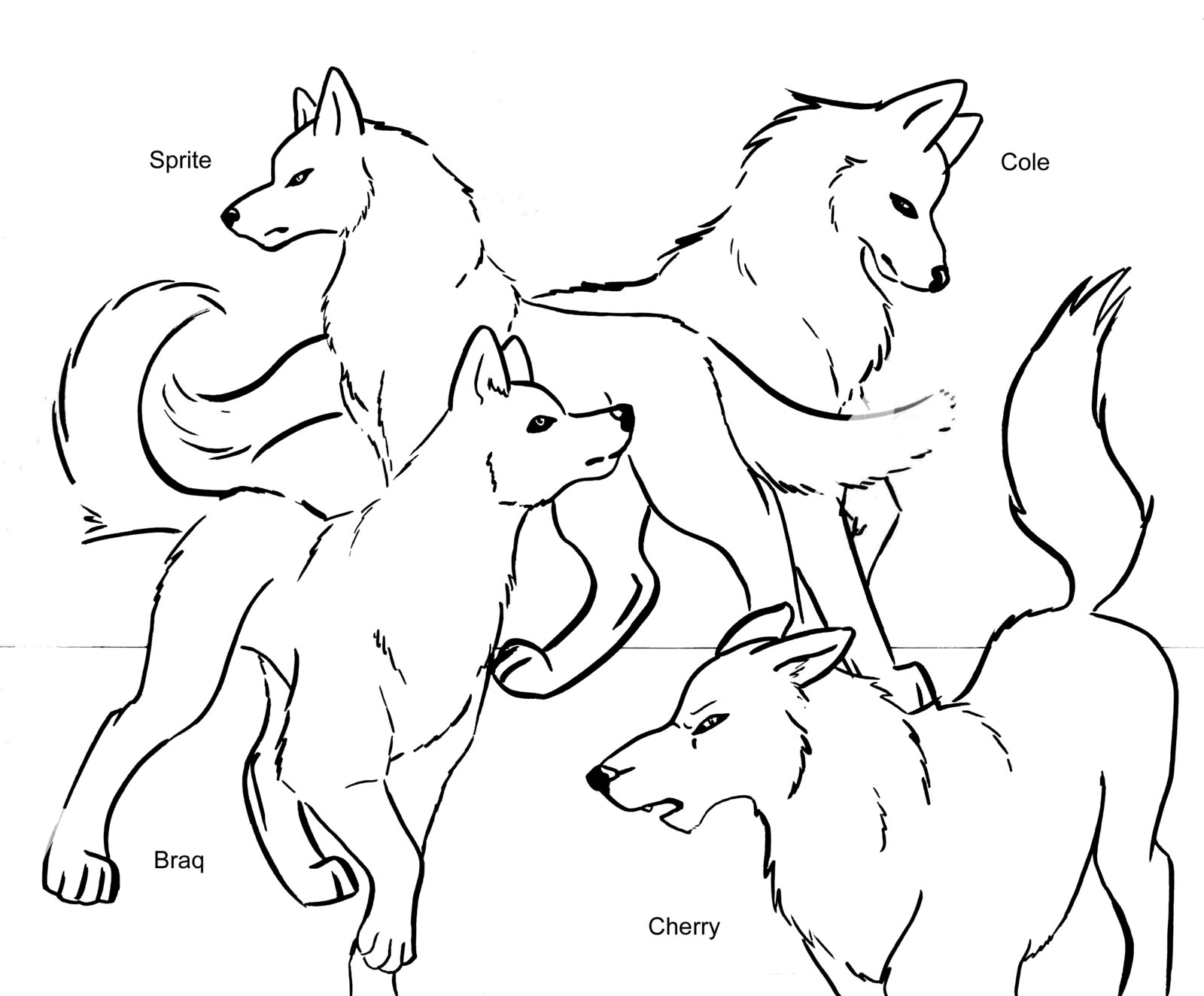 coloring picture of wolves free wolf coloring pages wolves picture of coloring