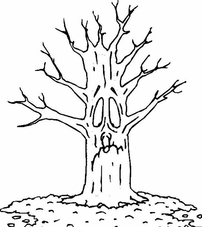 coloring picture tree apple tree coloring page free printable buylapbook coloring tree picture