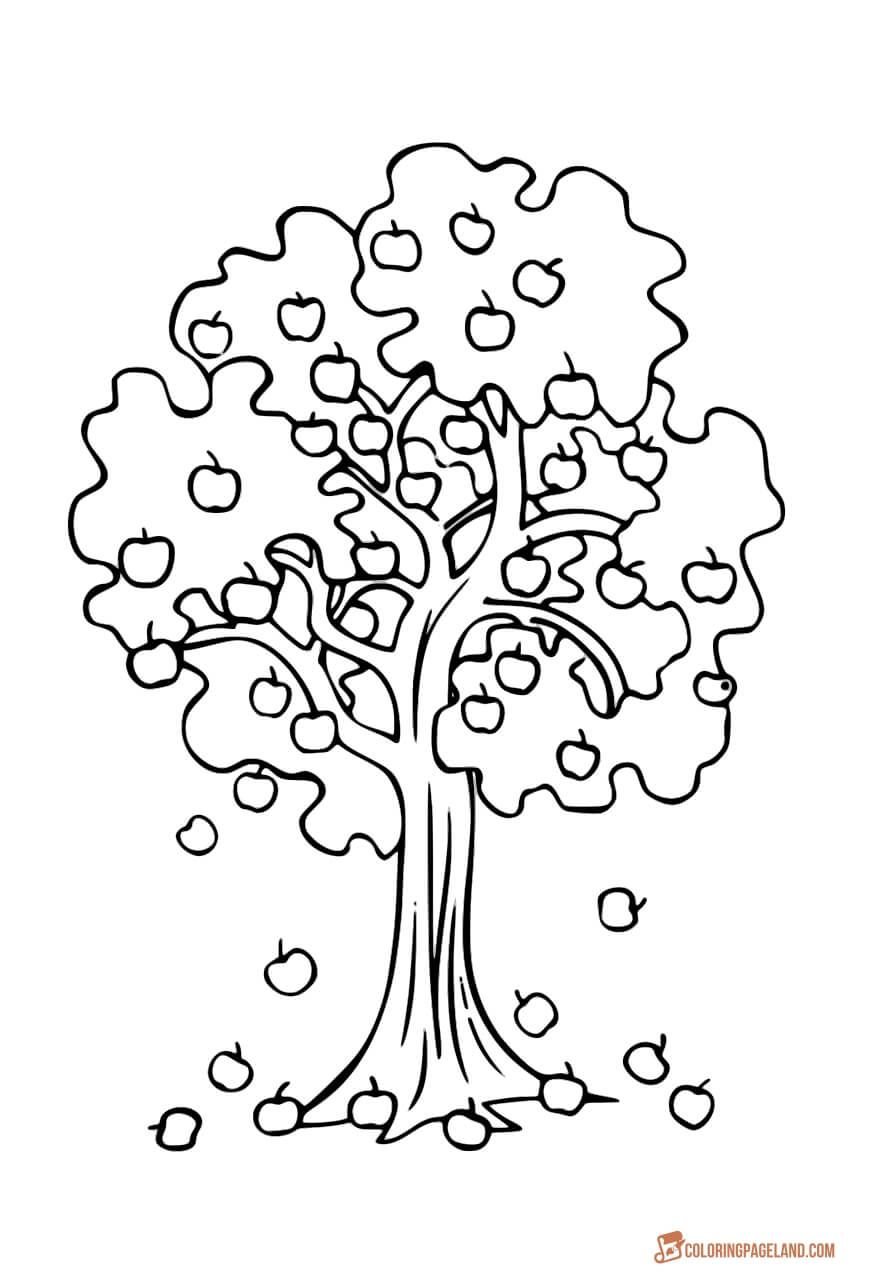 coloring picture tree bare tree coloring page at getcoloringscom free coloring picture tree
