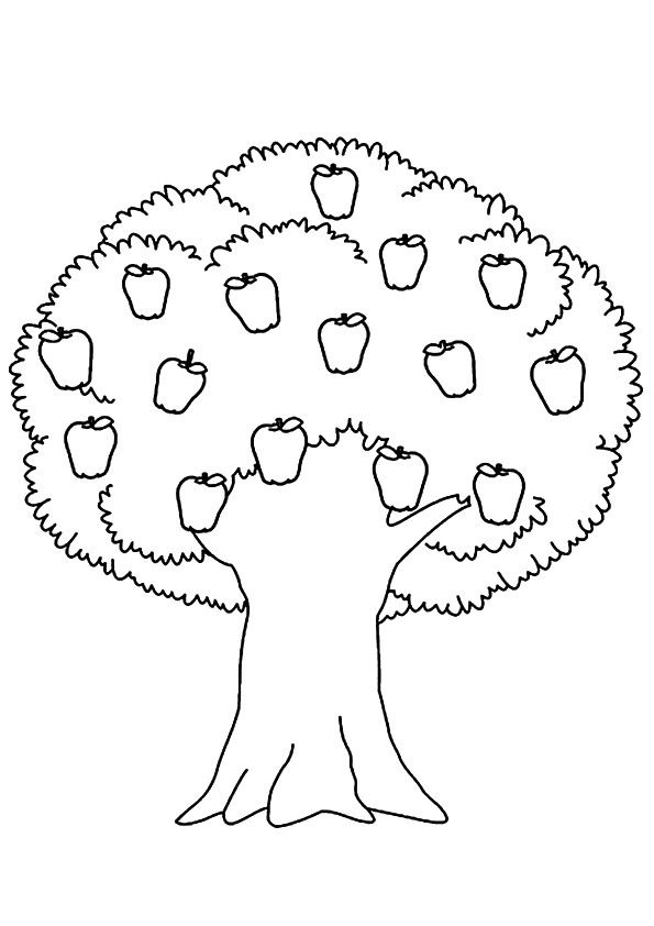 coloring picture tree fall tree trunk clip art cliparts coloring tree picture
