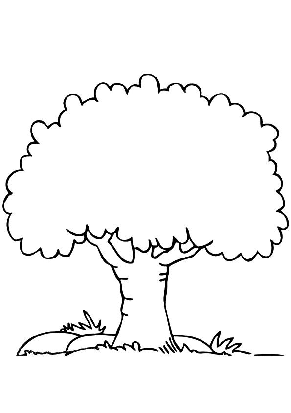 coloring picture tree free printable tree coloring pages for kids picture coloring tree