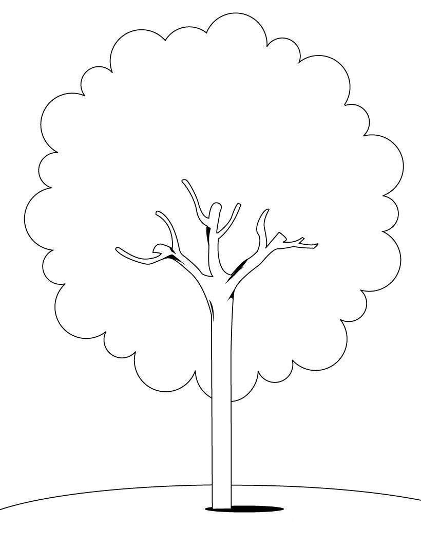 coloring picture tree top 35 free printable christmas tree coloring pages online tree picture coloring