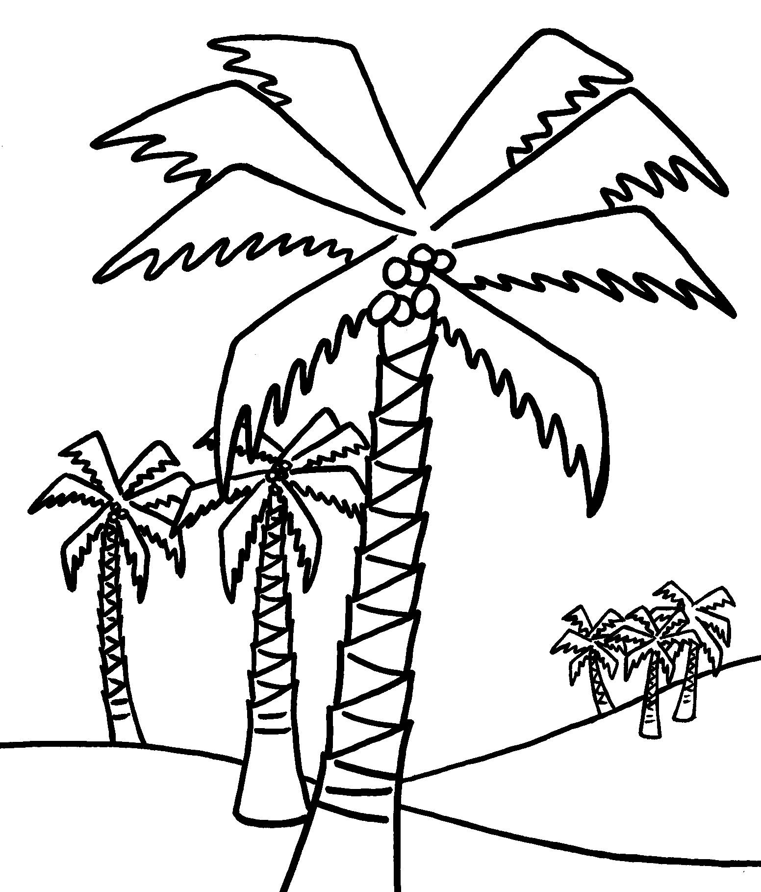 coloring picture tree tree drawing outline free download on clipartmag coloring tree picture