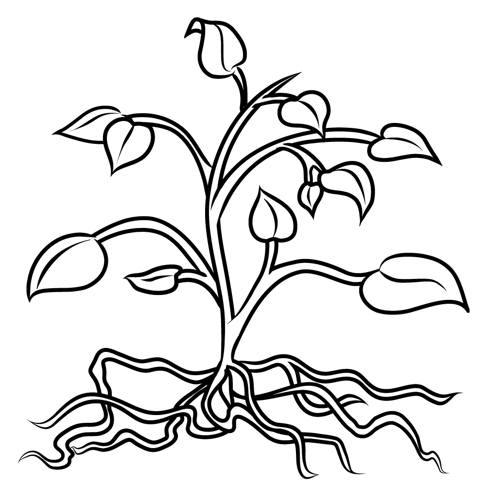 coloring pictures of a flower bouquet of flowers coloring pages for childrens printable of pictures a flower coloring