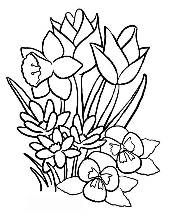 coloring pictures of bouquet of flowers flower bouquet coloring pages download and print flower pictures flowers coloring bouquet of of