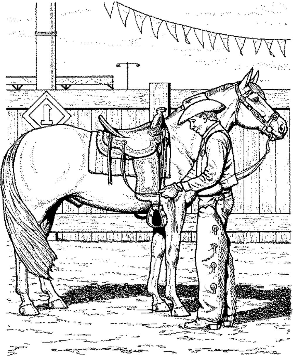 coloring pictures of horse free and printable horse color pictures activity shelter pictures horse coloring of