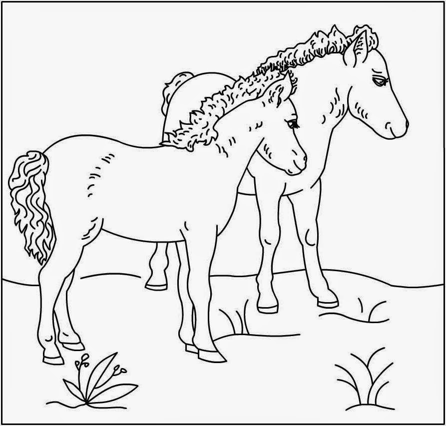 coloring pictures of horse fun horse coloring pages for your kids printable coloring horse of pictures