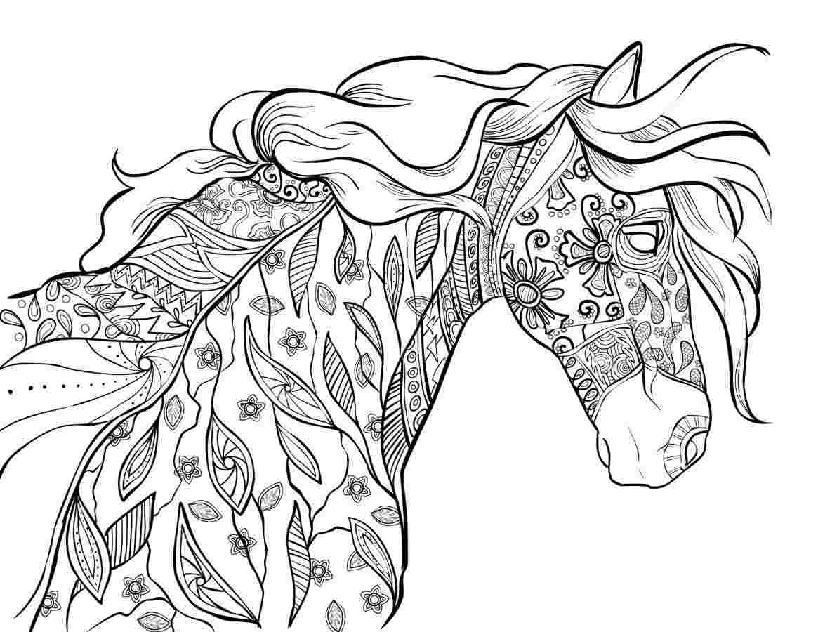 coloring pictures of horse horse for colouring 2005 by mambolica on deviantart pictures of coloring horse