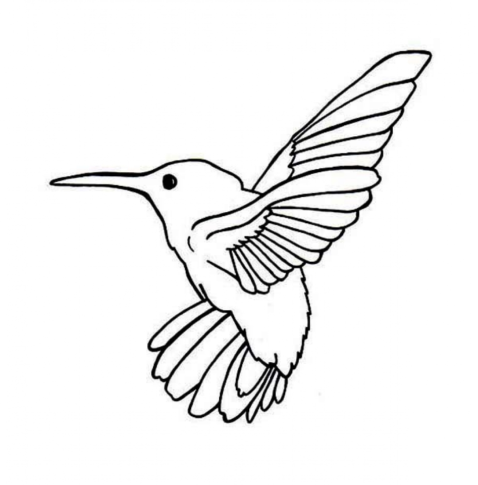 coloring pictures of hummingbirds get this printable hummingbird coloring pages online 89391 pictures of coloring hummingbirds
