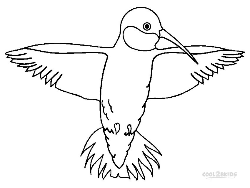 coloring pictures of hummingbirds hummingbird coloring pages of hummingbirds coloring pictures