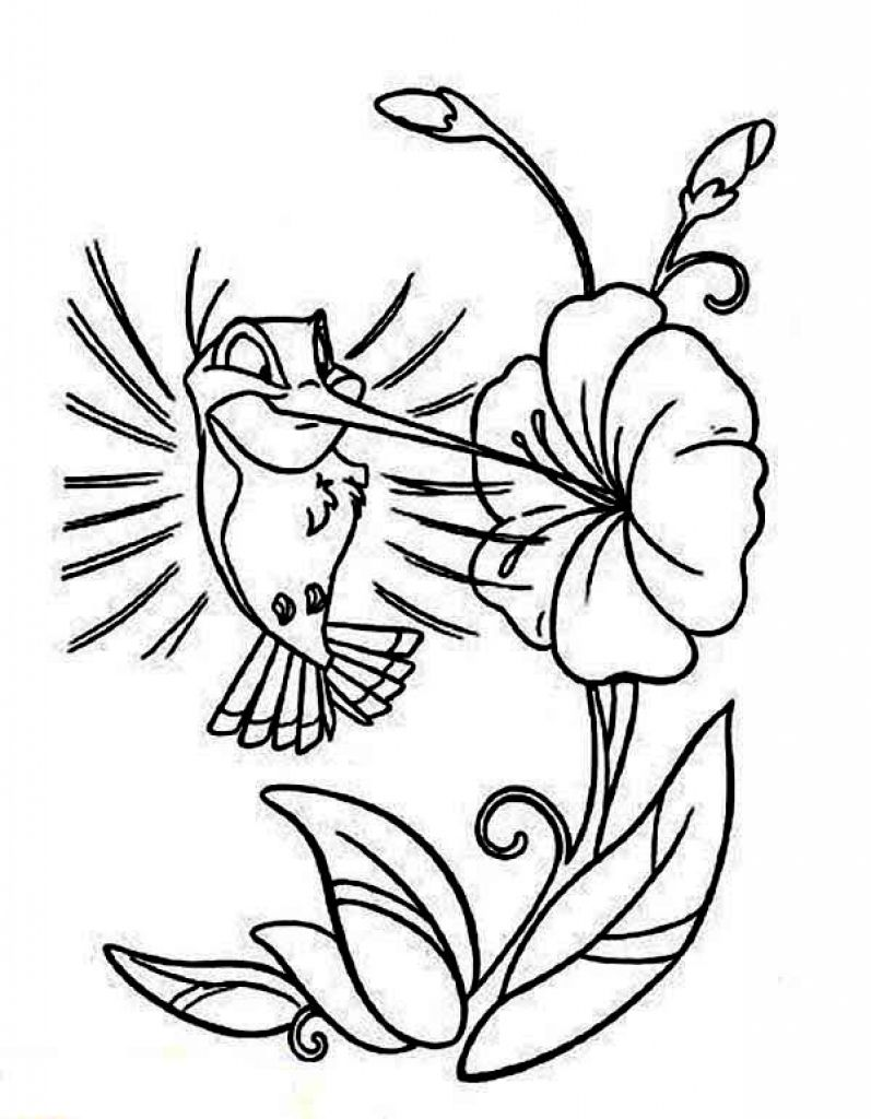 coloring pictures of hummingbirds online printable cartoon hummingbird coloring page for pictures coloring of hummingbirds