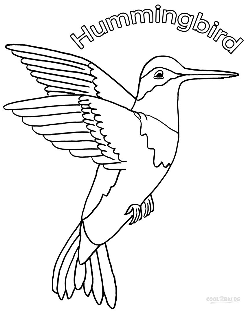 coloring pictures of hummingbirds printable hummingbird coloring pages for kids hummingbirds coloring of pictures