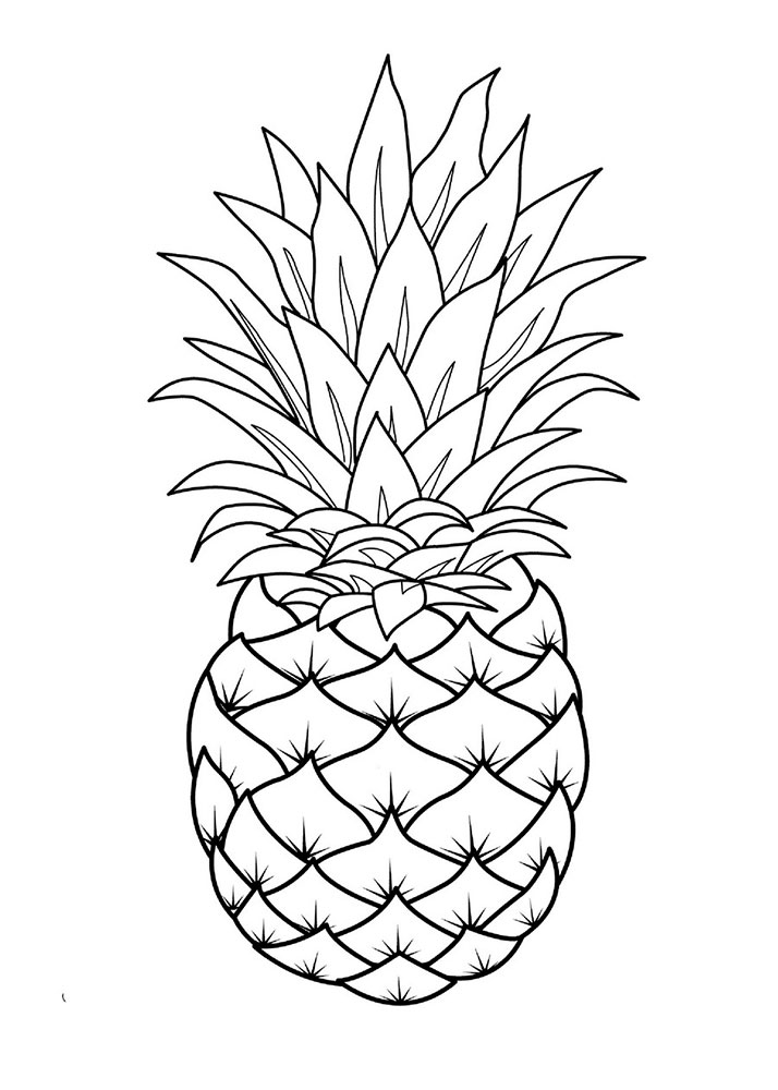 coloring pictures of pineapple a drawing of exotic smooth cayenne pineapple coloring page coloring pineapple of pictures