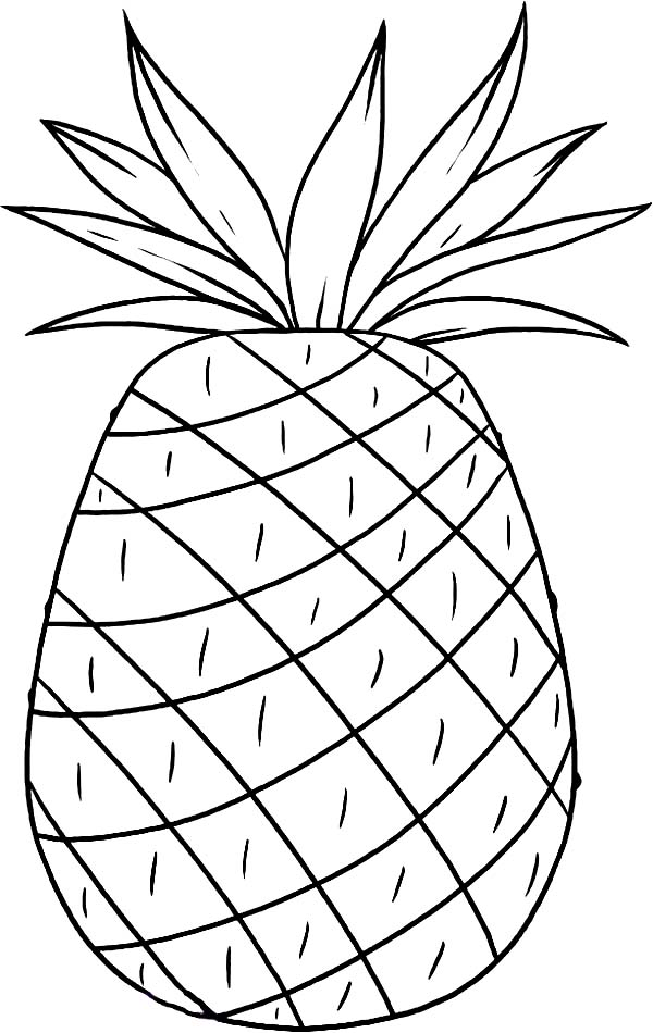 coloring pictures of pineapple pineapple coloring pages coloring pages to download and pineapple pictures coloring of