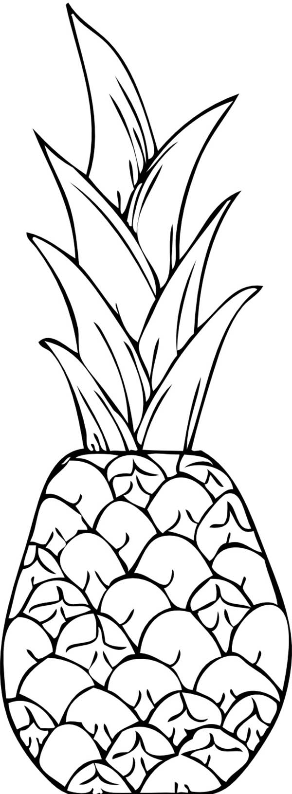 coloring pictures of pineapple pineapple coloring pages for kids coloringfile pictures of pineapple coloring