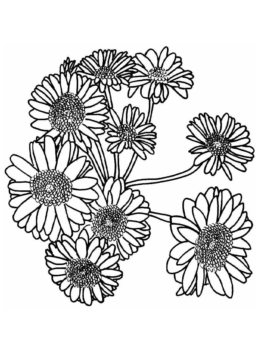coloring pictures of sunflowers printable sunflower az coloring pages clip art library sunflowers coloring pictures of