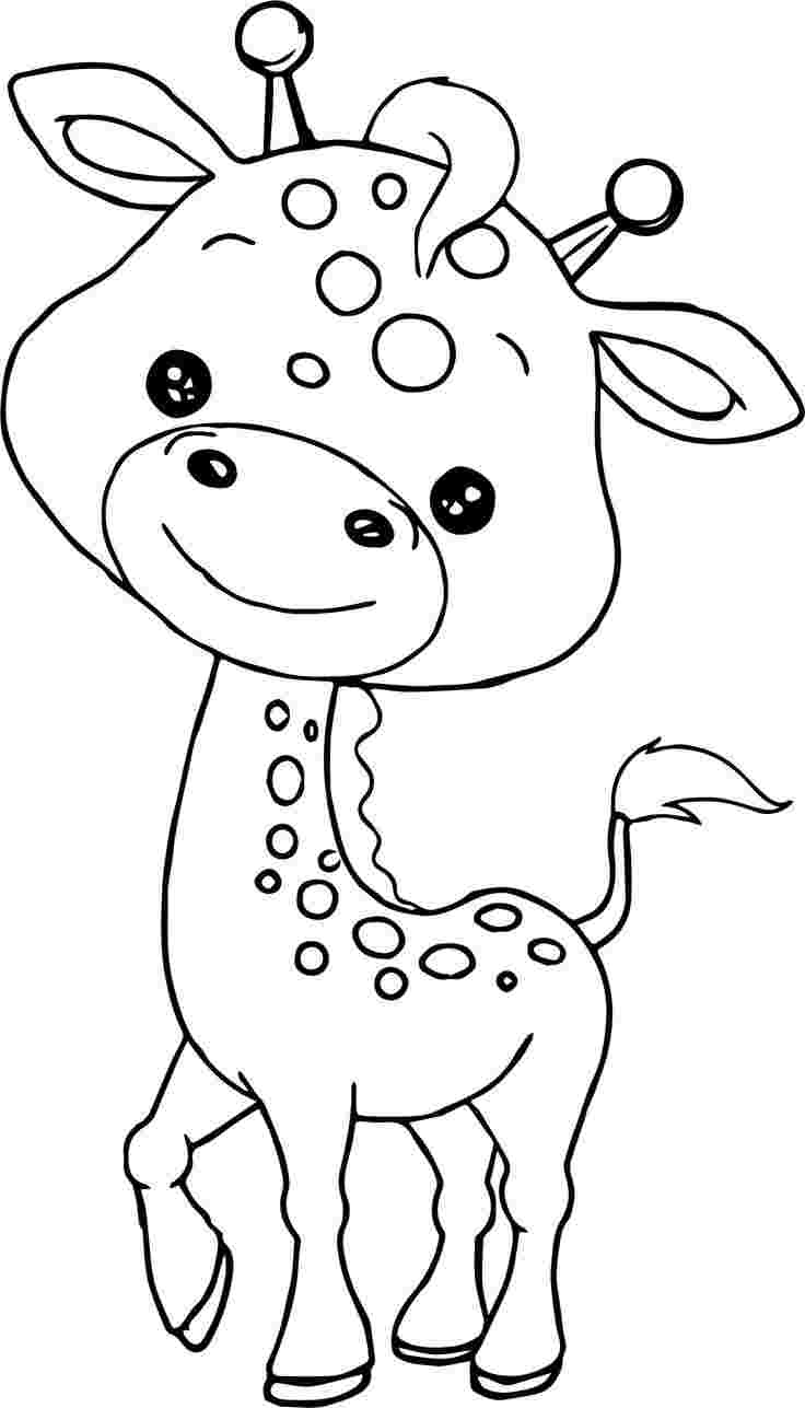 Coloring pictures of zoo animals