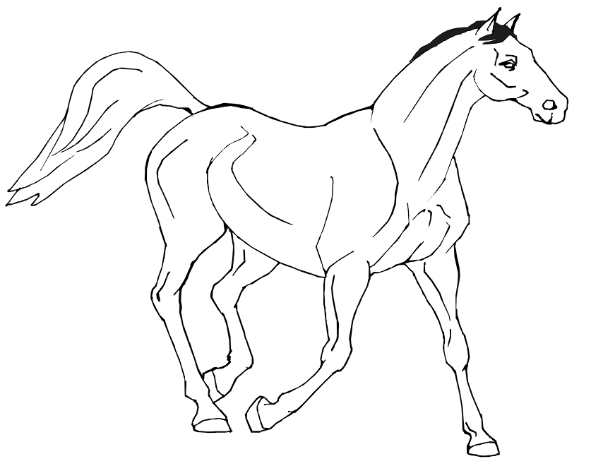 coloring sheet horse coloring pages of horses printable free coloring sheets sheet horse coloring
