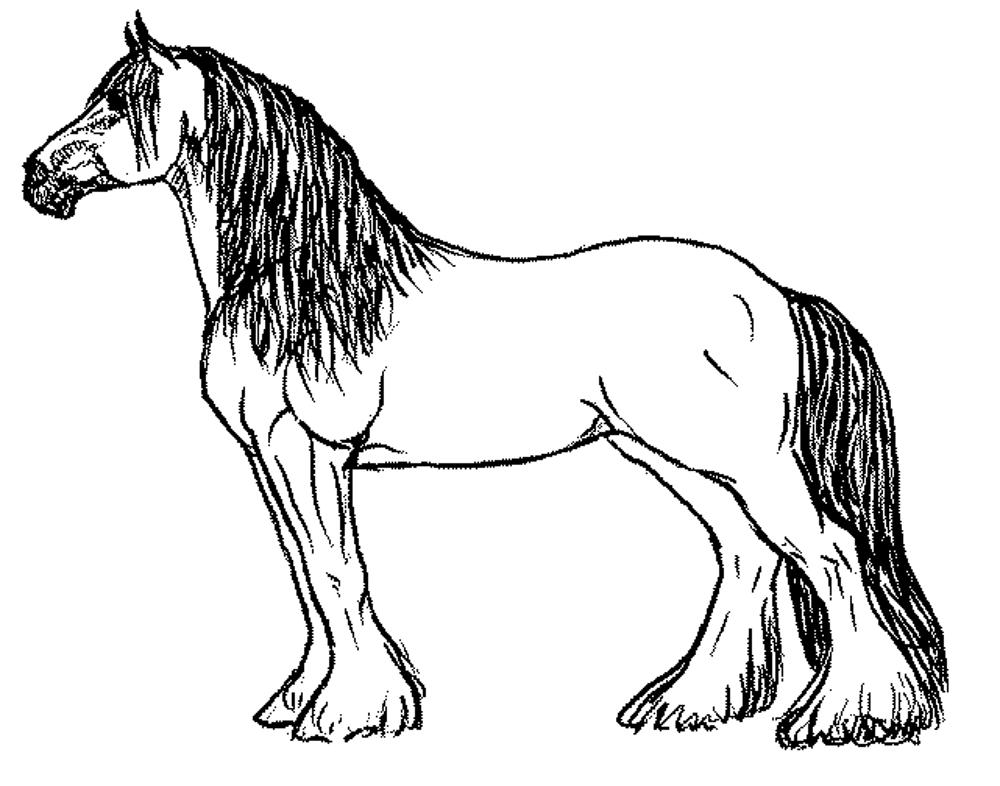 coloring sheet horse detailed horse coloring pages at getcoloringscom free coloring horse sheet