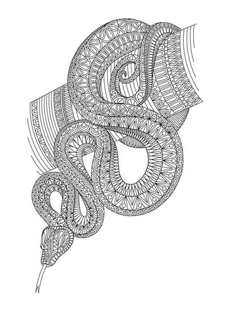 coloring snake pages free printable snake coloring pages for kids coloring pages snake