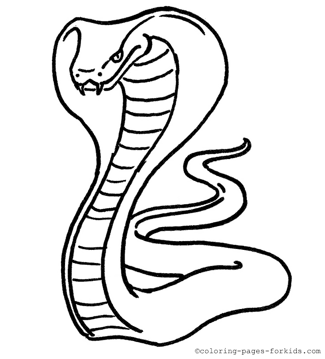 coloring snake pages snake coloring pages getcoloringpagescom snake pages coloring