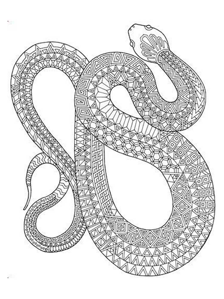coloring snake pages snake coloring pages to download and print for free pages coloring snake
