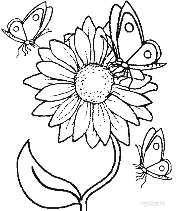 coloring sunflower printable sunflower free colouring pages coloring sunflower printable