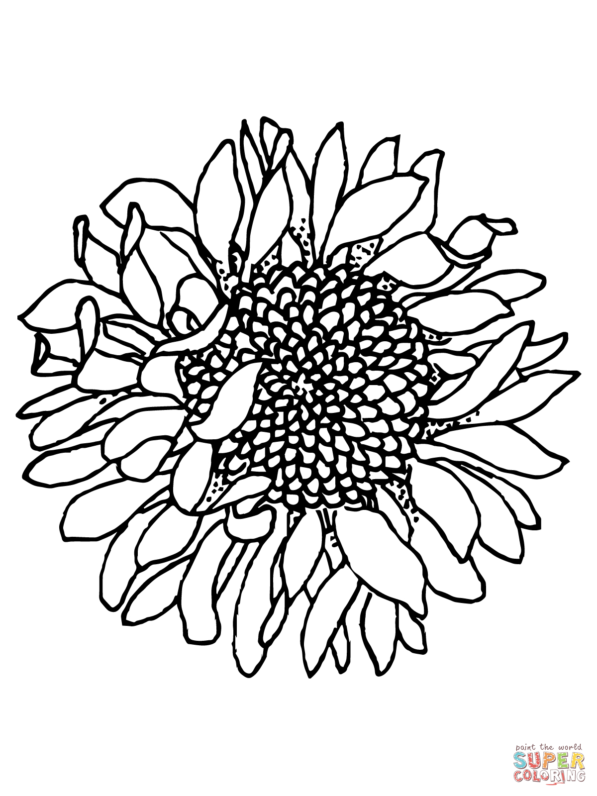 coloring sunflowers printable simple sunflower drawing at getdrawings free download sunflowers printable coloring