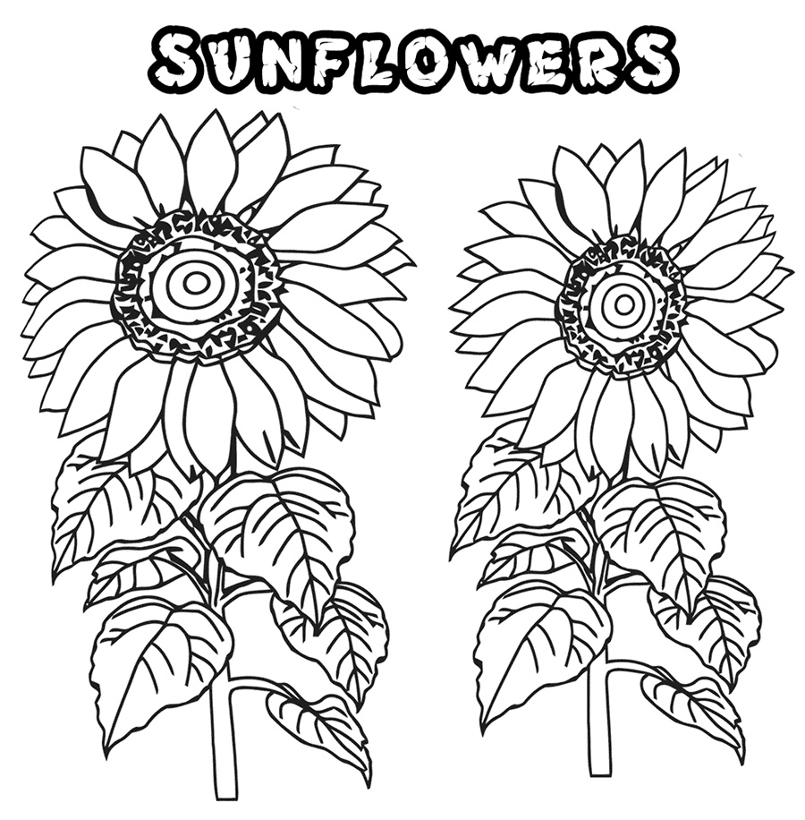 coloring sunflowers printable sunflower coloring page getcoloringpagescom printable sunflowers coloring
