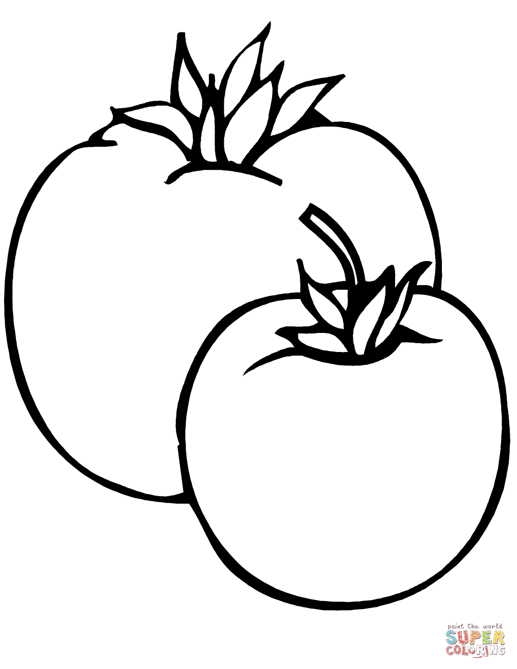 coloring tomato template 28 free printable tomato coloring pages in vector format template tomato coloring