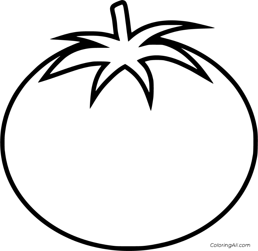 coloring tomato template tomatoes for coloring sketch coloring page tomato template coloring