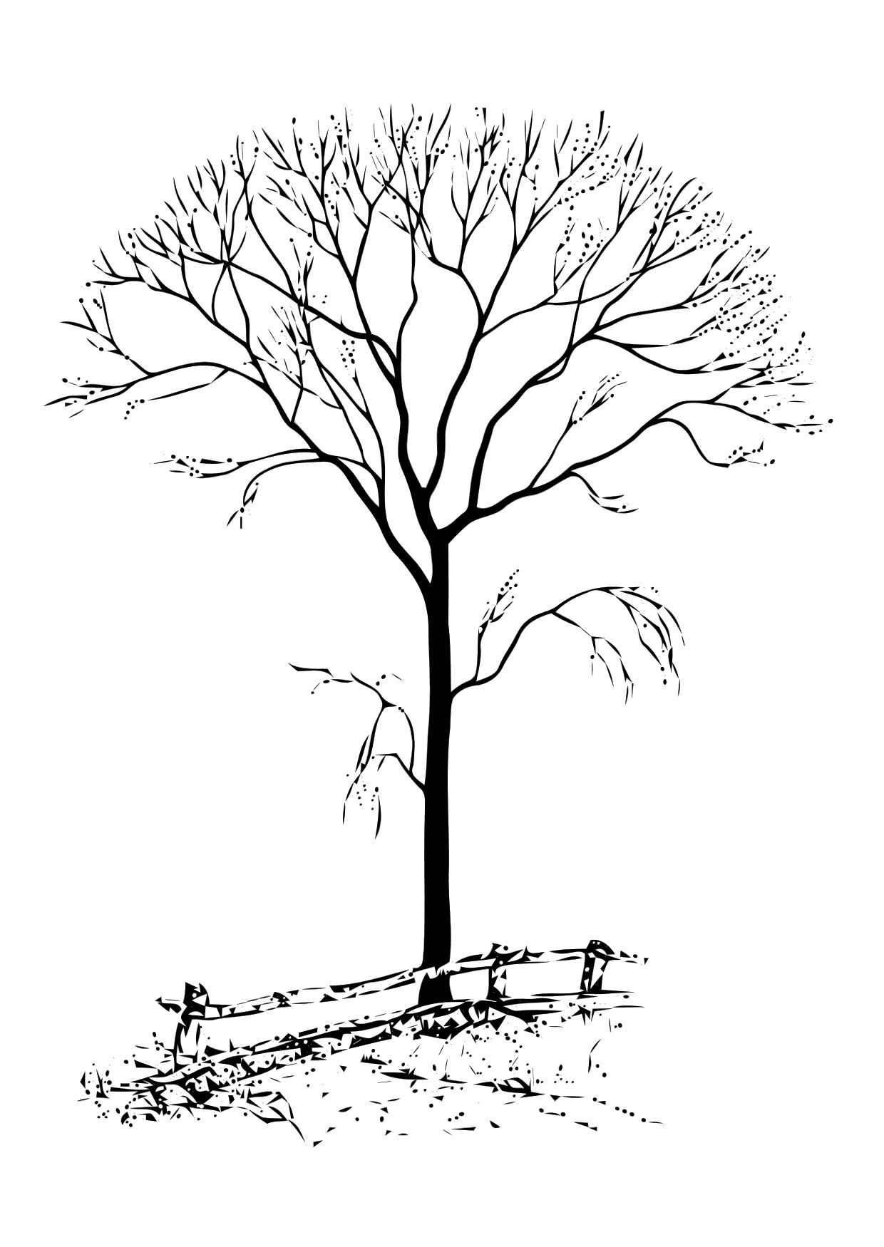 coloring tree for kids coloring tree for kids kids for tree coloring