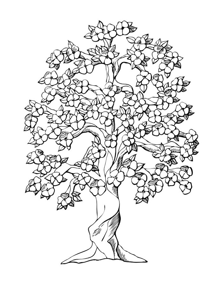 coloring tree for kids fall tree coloring pages for kids nature printables free tree kids for coloring
