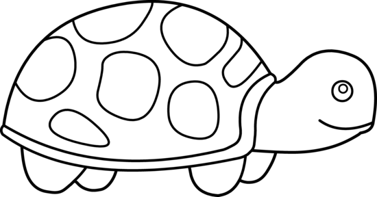 coloring turtle parking animal coloring page lovable turtle pictures to color turtle parking coloring