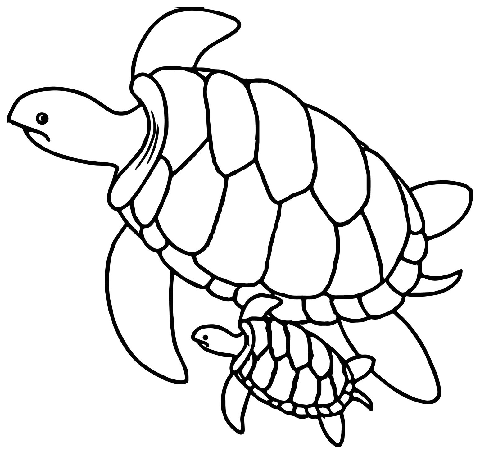 coloring turtle parking coloring animals turtle with images turtle coloring turtle coloring parking