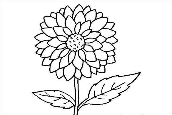 colouring flowers pictures coloring pages flower free printable coloring pages colouring pictures flowers