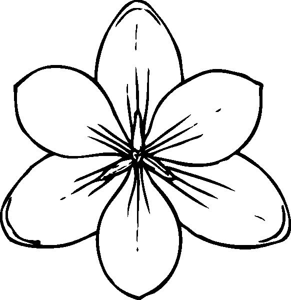 colouring flowers pictures flowers coloring pages for adults free printable flowers flowers colouring pictures