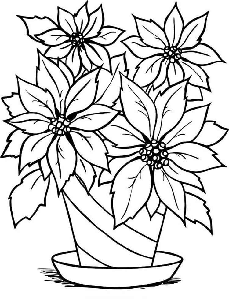 colouring flowers pictures poinsettia flower coloring pages download and print flowers colouring pictures 1 1