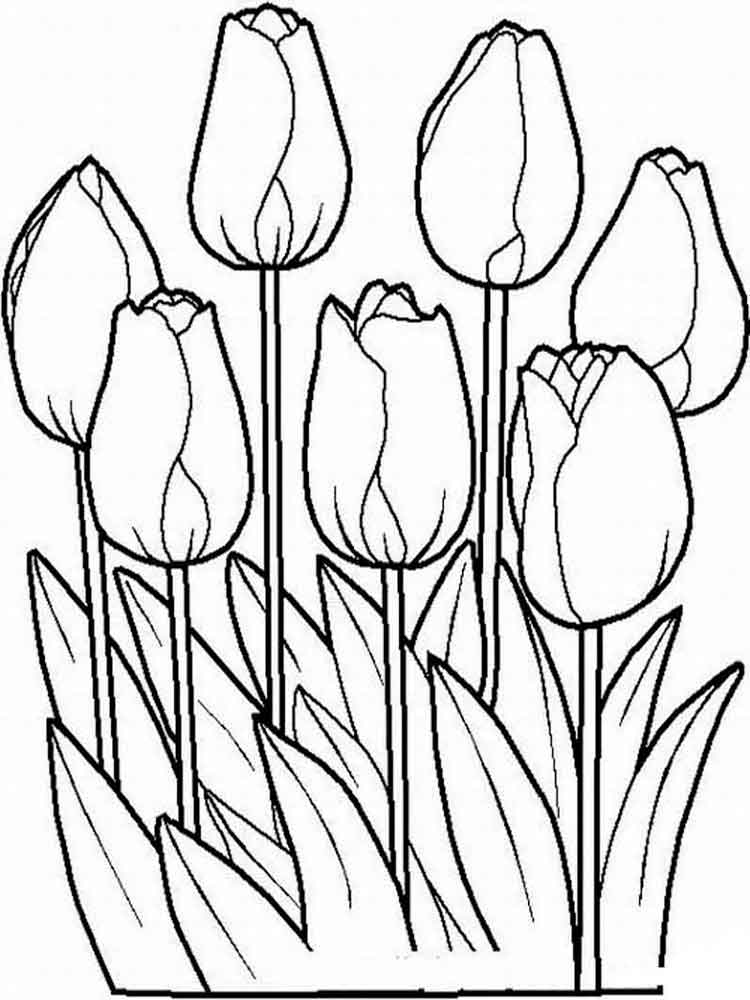 colouring flowers pictures tulip coloring pages download and print tulip coloring pages colouring pictures flowers